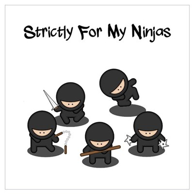 Strictly Ninjas Poster