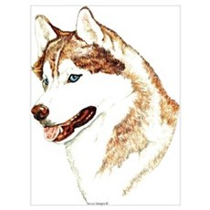 Siberian Husky Portrait Canvas Art