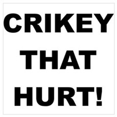 Crikey That Hurt Poster