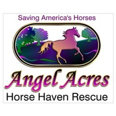 Angel Acres Horse Haven Rescue Framed Print