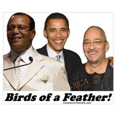 """Birds of a Feather"" Poster"