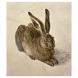 Rabbit Posters