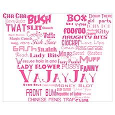 V is for Vagina Pink Poster