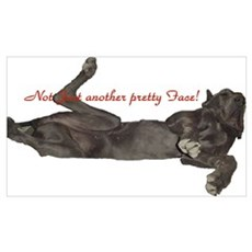 Blue Great Dane, Lazy Dane Framed Print