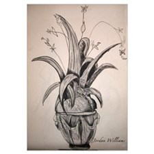 """""""Plant in Shadows"""""""