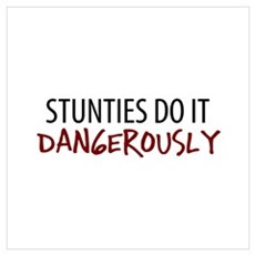 Dangerous Stunties Poster