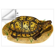 Eastern Box Turtle Wall Decal