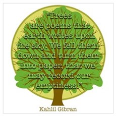 Tree Wisdom Framed Print