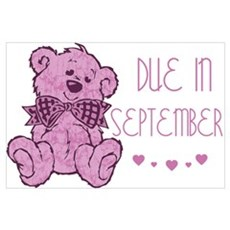Pink Marble Teddy Due September Poster