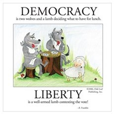Democracy & Liberty Poster