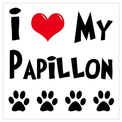 I Love My Papillon Poster