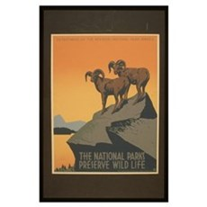 The National Parks Preserve W Poster