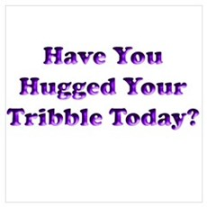 Hugged Your Tribble Poster