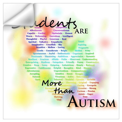 My Students Are More Than Autism Frame Wall Decal