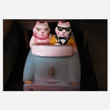 Cruising Cats