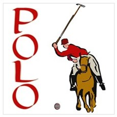 ...Polo... Framed Print
