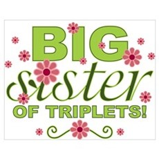 Big Sister of Triplets Poster