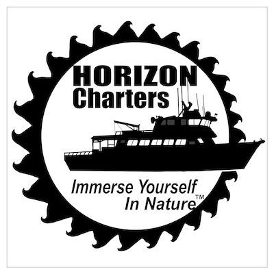 HC Logo (BW) Poster