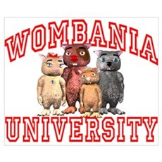 Wombania University Poster