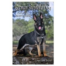 GSD-8 Poster