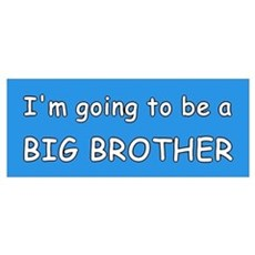 I'm going to be a BIG BROTHER Poster