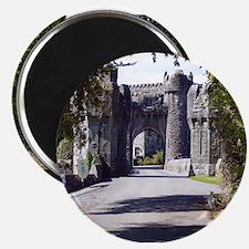 Ashford Castle Magnet