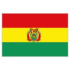 Bolivian Flag Wall Art Poster