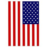 American flag Posters