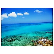 Bermuda Coast Poster