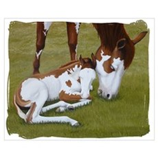 Paint Mare & Foal Canvas Art