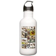 Cute Animal Sports Water Bottle