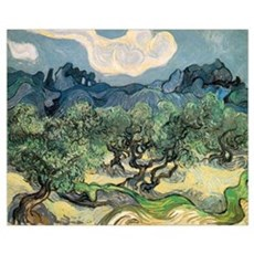 Olive Trees with the Alpilles Poster