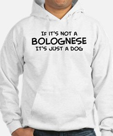If it's not a Bolognese Hoodie