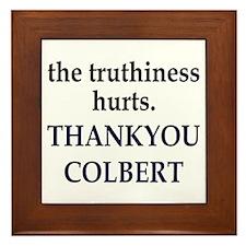 Thankyou Colbert Framed Tile