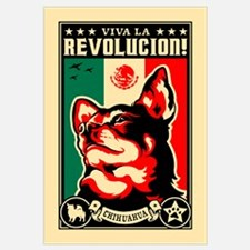 Viva la Revolucion CHIHUAHUA