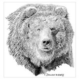 Grizzly bear Wrapped Canvas Art