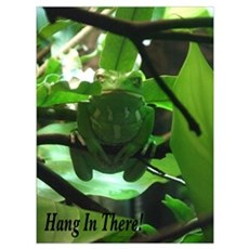 Hang in There! Framed Print