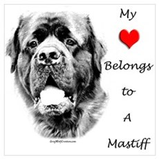 Mastiff 169 Framed Print