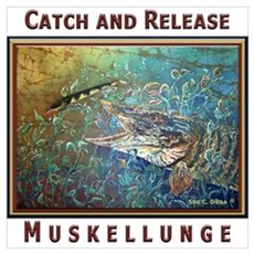 Musky<br> 16 x 20 in. Poster