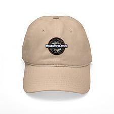 Walleye Slayer Baseball Cap