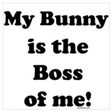 Boss of me...Bunny Poster