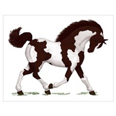 Brown Tobiano Horse Poster