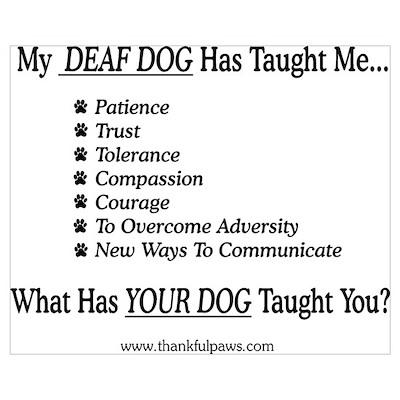 My Deaf Dog Taught Me Poster
