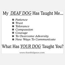 My Deaf Dog Taught Me