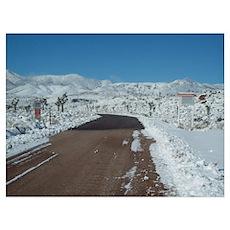 Groom Lake Road Warning Signs Poster
