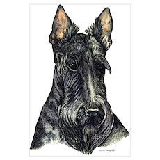 Scottish Terrier Scotty Poster