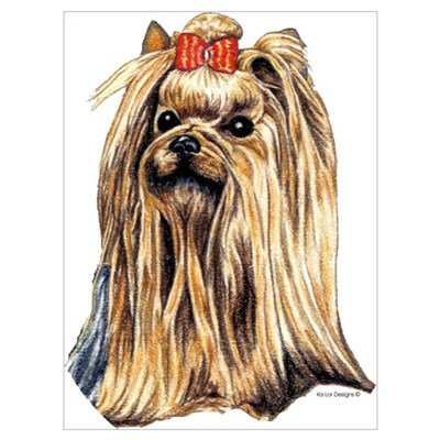 Yorkshire Terrier Dog Portrait Poster