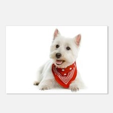 Westie With Red Bandana Postcards (Package of 8)