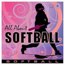 2011 Softball 107 Poster