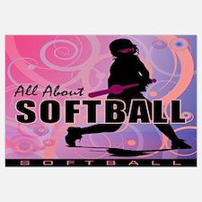 2011 Softball 107